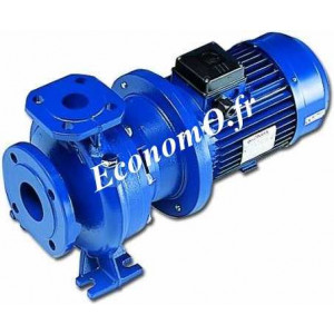 Pompe de Surface Monobloc Lowara FHE 40-125/15 Fonte de 18 à 42 m3/h entre 17 et 6 m HMT Tri 230/400 V 1,5 kW - EconomO.fr