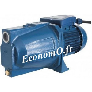 Pompe Jets Monocellulaire Renson RCT100P de 0,6 à 3,6 m3/h entre 47 et 10 m HMT Tri 380 V 0,74 kW - EconomO.fr