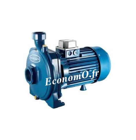 Pompe Monocellulaire Fonte Renson de 1,2 à 5,4 m3/h entre 20,5 et 12 m HMT Tri 380 V 0,37 kW - EconomO.fr