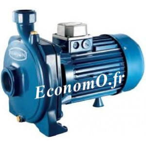 Pompe Monocellulaire Fonte Renson de 1,2 à 7,2 m3/h entre 48,7 et 39,4 m HMT Tri 380 V 1,65 kW - EconomO.fr