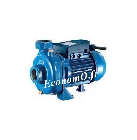 Pompe Monocellulaire Fonte Renson de 2,4 à 16,8 m3/h entre 20 et 10,5 m HMT Mono 230 V 0,74 kW - EconomO.fr