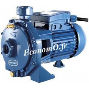 Pompe Bicellulaire Renson de 0,6 à 7,2 m3/h entre 52,5 et 35 m HMT Mono 230 V 1,1 kW - EconomO.fr
