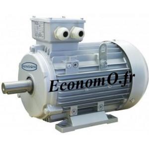 Moteur Electrique Renson Type B3 Tri 230/400 V 0,55 kW 1500 tr/min IE1 - EconomO.fr