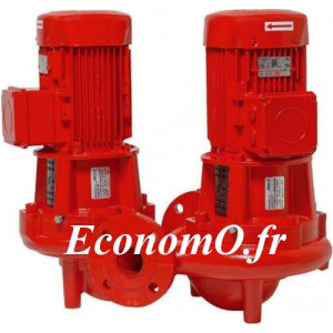 Pompe en Ligne Double Salmson DIL403-17/0.55 de 3 à 24 m3/h entre 10,4 et 5,7 m HMT Tri 400 V 0,55 kW  - EconomO.fr