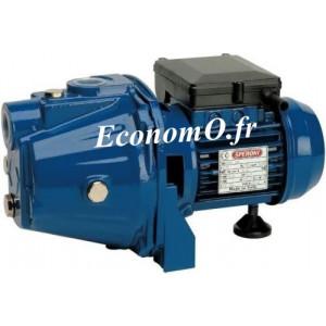 Pompe de Surface Speroni CAM 40 Fonte de 0,6 à 3 m3/h entre 38 et 19 m HMT Mono 230 V 0,6 kW - EconomO.fr