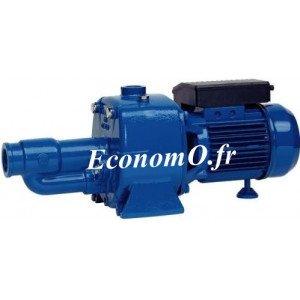 Pompe de Surface Speroni CA 150 Bi-Cellulaire de 0,6 à 4,8 m3/h entre 58 et 10 m HMT Tri 400 V 1,1 kW - EconomO.fr