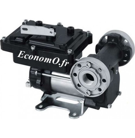 Pompe PIUSI EX50 230 V 50 Hz DC ATEX 50 l/mn 250 W - EconomO.fr