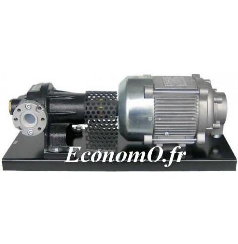 Pompe Volumetrique pour le Transvasement de Gasoil Piusi P80EXX TRI 4000 V 50 Hz 75 l/mn 0,75 kW - EconomO.fr