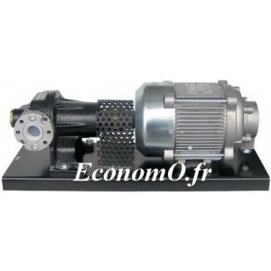 Pompe Volumetrique pour le Transvasement de Gasoil Piusi P80EXX MONO 230 V 50 Hz 75 l/mn 0,75 kW - EconomO.fr