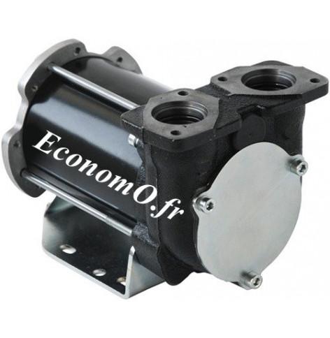 Pompe a Palettes pour Transvasement de Gasoil BP 3000 Piusi 24/12 V 50/30 l/mn