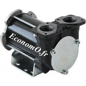 Pompe a Palettes pour Transvasement de Gasoil BP 3000 Piusi 24/12 V 50/30 l/mn - EconomO.fr