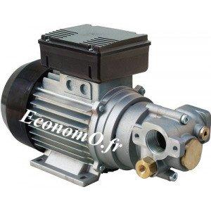 Pompe à Engrenage pour Huile Piusi Viscomat GEAR 200/2 Tri 400 V 9 l/mn 0,55 kW - EconomO.fr