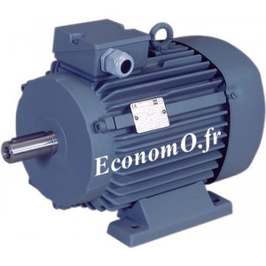 Moteur Haut Rendement VEM IE2-WE1R 100 L2 B3 Tri 400 V 3 kW 3000 tr/min 50 Hz - EconomO.fr