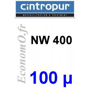 Sachet de 5 Tamis Filtrant 100 microns pour NW 400 - EconomO.fr