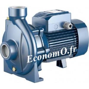Pompe de Surface Pedrollo Monocellulaire CP 250CR de 6 à 54 m3/h entre 56 et 24 m HMT Tri 400-695 V 7,5 kW