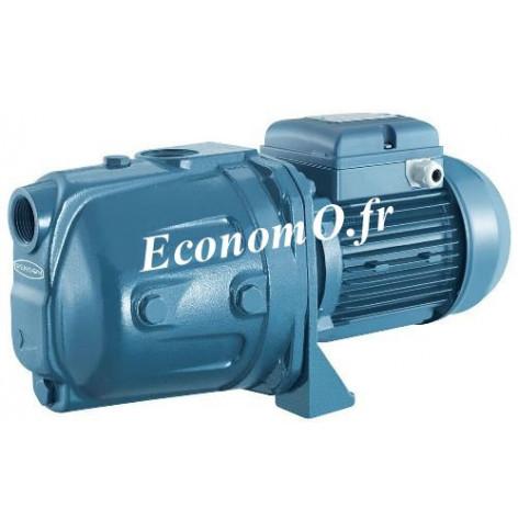 Pompe de Surface Renson CAM100N de 0,5 à 4,2 m3/h entre 46 et 20 m HMT Mono 230 V 0,74 kW