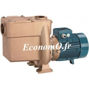 Pompe Bronze avec Préfiltre Calpeda BNMP 50-12G pour Piscine 6,6 à 21 m3/h entre 12 et 3,5 m HMT Tri 230 400 V 1,5 kW - EconomO.