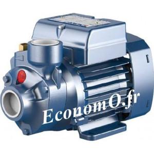 Pompe de Surface Pedrollo à Aspiration Axiale PKm 90 de 0,3 à 2,4 m3/h entre 82 et 5 m HMT Mono 220-230 V 0,75 kW - EconomO.fr